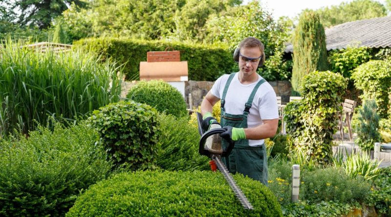 The benefits of landscaping according to landscapers in Byron Bay