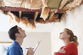 Things to expect during a termite inspection in the Gold Coast